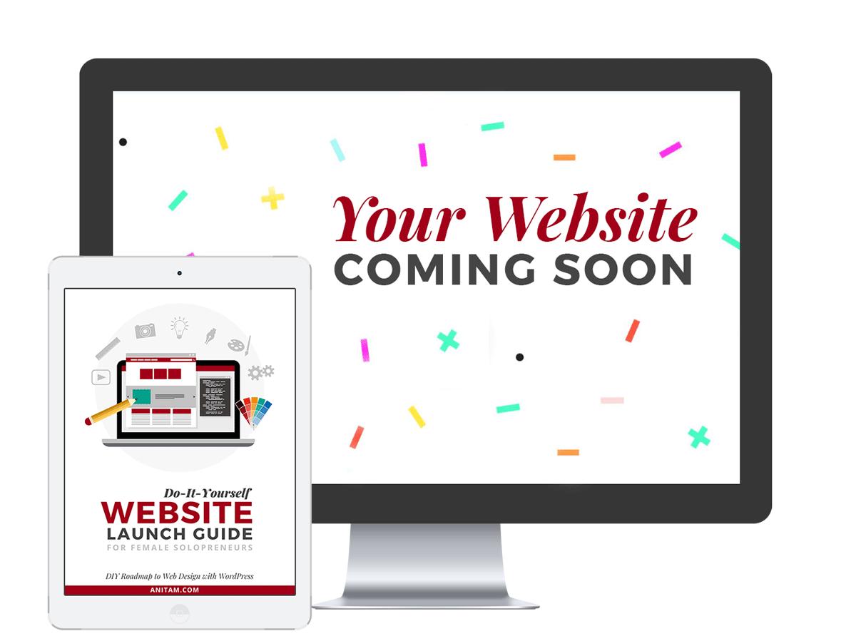 Website Launch Guide for WordPress | AnitaM
